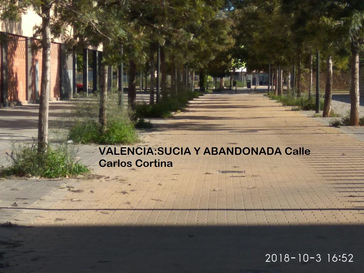"""VALENCIA BARRIOS SUCIOS Y ABANDONADOS """"COMENTARIOS DE LOS VECINOS"""""""