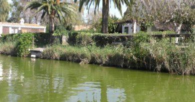Parque natural el Palmar Valencia. ( La Albufera)